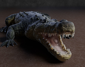 3D asset Low Poly Crocodile