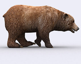animated low-poly 3DRT - Wild Bear
