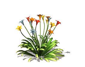 3D model Wildflowers