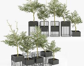 Kehlani Plant Stand Olea 3D