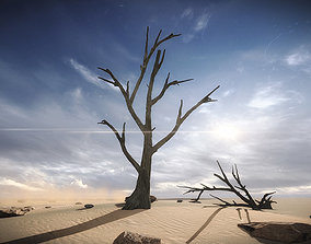FREE 3 Dead Trees Sample Models 3D asset