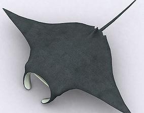 animated 3DRT - Sealife - Manta ray