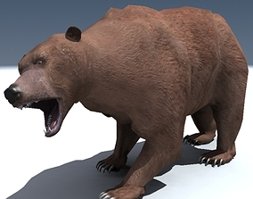 3D Grizzly Bear Rigged