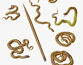 Yellow Snake - 3D Mesh game-ready