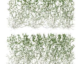 3D model Wall of ivy leaves v3