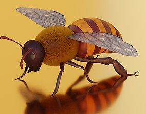 Honey Bee Fairly Realistic 3D model
