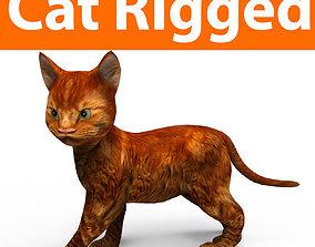 3D asset Cute Cat Rigged