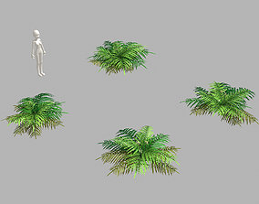 Weeds - Grass 55 3D