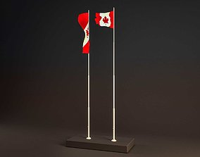 Flag with Animation 3D asset
