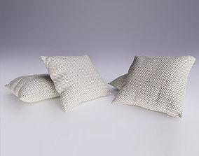 Contemporary Cushion 3D model