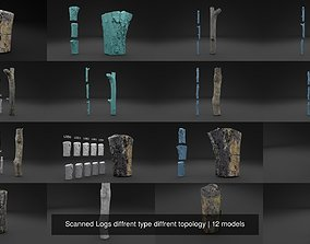 3D model Scanned Logs diffrent type diffrent topology