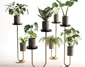 planters Cigales Plant Stands 3D model