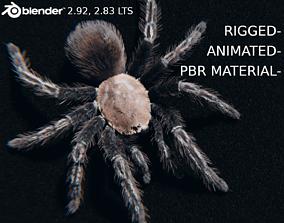 Skeleton Tarantula - Rigged and Animated 3D model