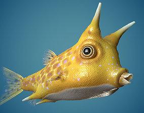 Fish Lactoria cornuta Lowpoly 3D model