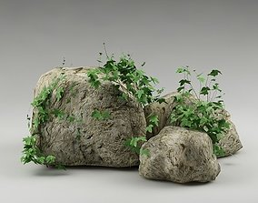 Ivy and stone 03 3D