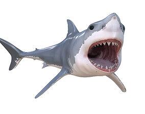orca 3D model Great white shark