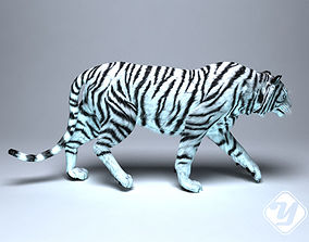 White Tiger for 3ds Max animated