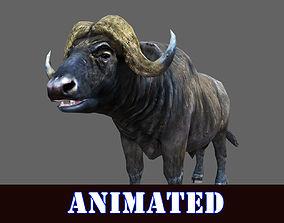 BUFFALO 3D MODEL ANIMATED - GAME READY animated