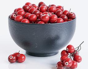 Cranberries 3D model twig