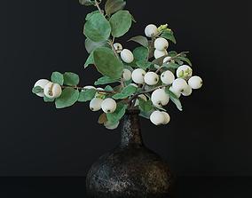 3D model Snowberry branch in vase