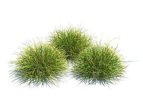 Three Peice Green Landscaping Grass 3D model