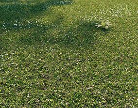 Wild grass exterior 3D model