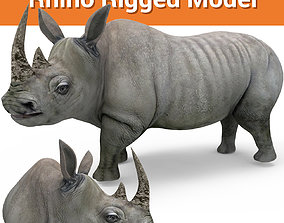 3D rhino rhinoceros realistic Rigged low poly rigged