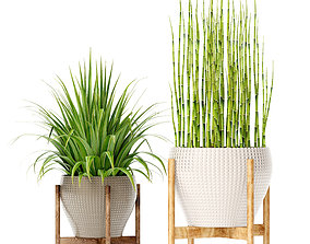 3D model modernica Plants collection