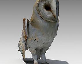 3D model Barn Owl Animated
