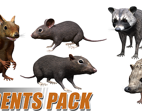 3D model Rodents pack