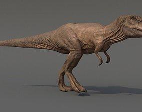 3D asset animated low-poly Tyrannosaurus Rex