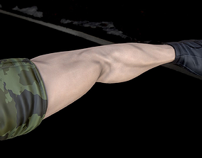 Rigged Male First Person Character Arms 3D