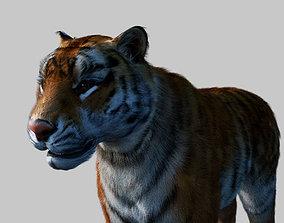 Tiger OLD 3D model