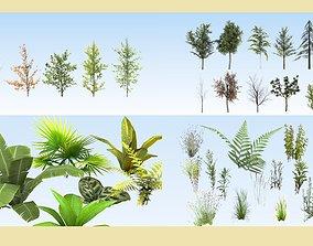 3D model Big vegetation collection