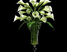 3D Calla Lily 2