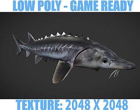 Shark 3D model low-poly