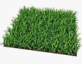 Grass 15cm 3D rigged