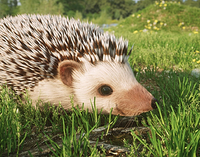 Hedgehog for Vray and Octane 3D model