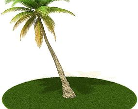 branches 3D model Palm Tree