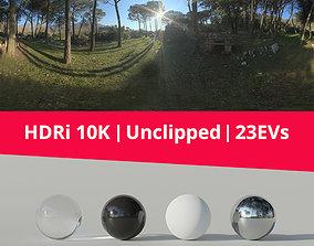 3D model HDRi - Woods