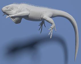 3D model Green Iguana