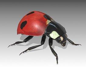 Ladybug Animated 3D model
