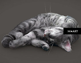 3D model Sleeping CAT