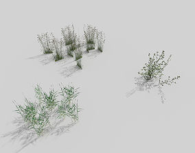 grass pack 3D model