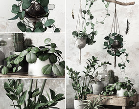 wood 3D model Plant Set