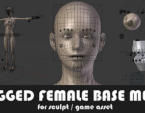 Fully Rigged Base Mesh with Face Rig for Blender 3D asset