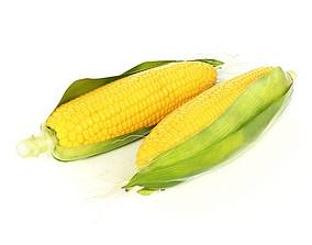 Yellow Corn In The Husk 3D model