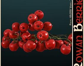 Rowan Berries 3D model