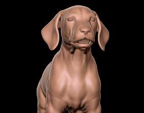 3D Dalmatian Puppy Sculpt