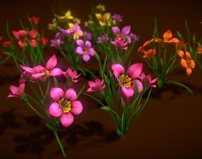 3D model Flower Romulea Subfistulosa
